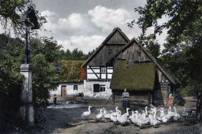 Die Schowtschickmühle