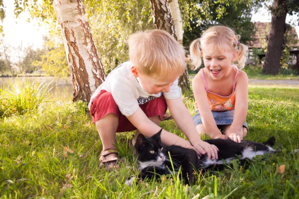 Viel Grün, Platz zum Toben und Spielen – in Wittichenau aufzuwachsen, ist für Kinder ein Vergnügen